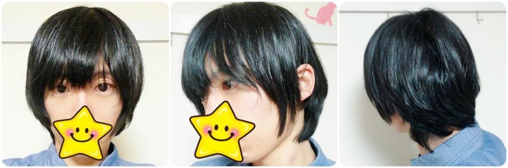 f:id:hamchang:20180303225319j:plain